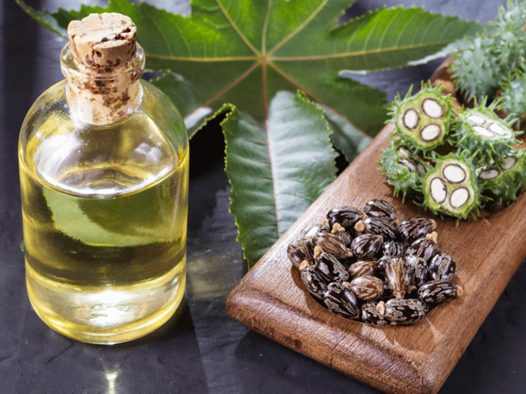 Organic Castor Oil for Hair Loss: Does it Help with Hair Regrowth?
