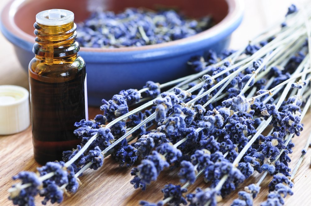 Lavender Oil For Hair Loss: Truth or Myth?
